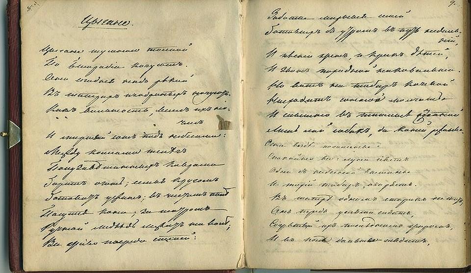 Эскперты считают, что дневник мог принадлежать женщине
